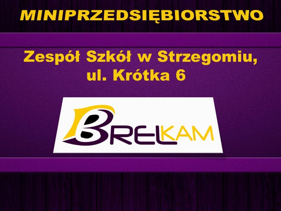 Zespół Szkół w Strzegomiu, ul. Krótka 6
