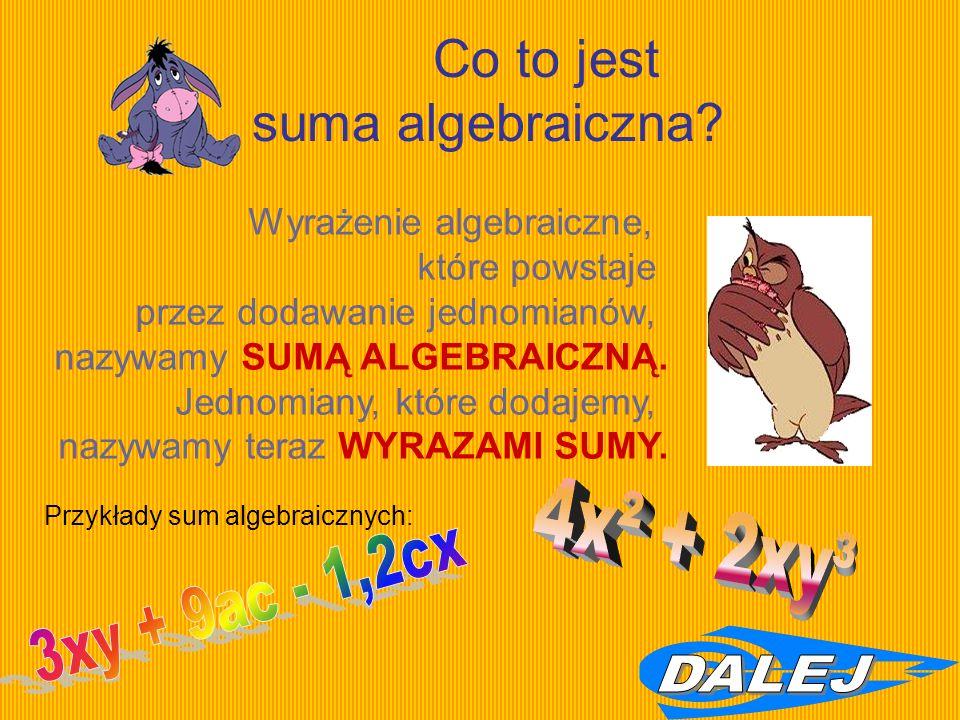Co to jest suma algebraiczna.