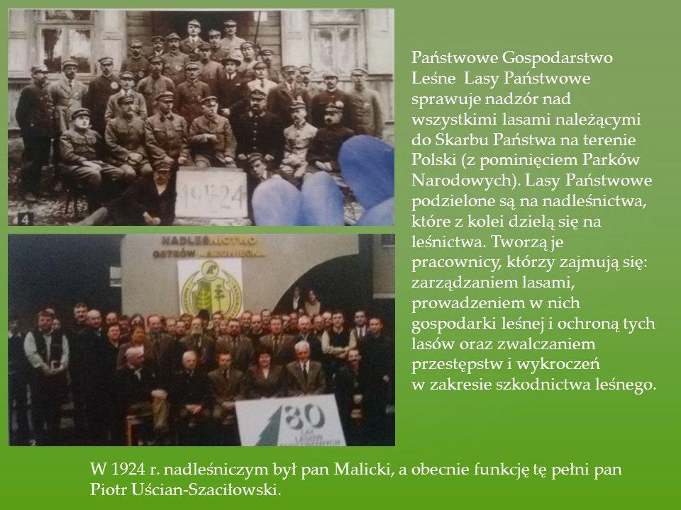Państwowe Gospodarstwo Leśne  Lasy Państwowe sprawuje nadzór nad wszystkimi lasami należącymi do Skarbu Państwa na terenie Polski (z pominięciem Park