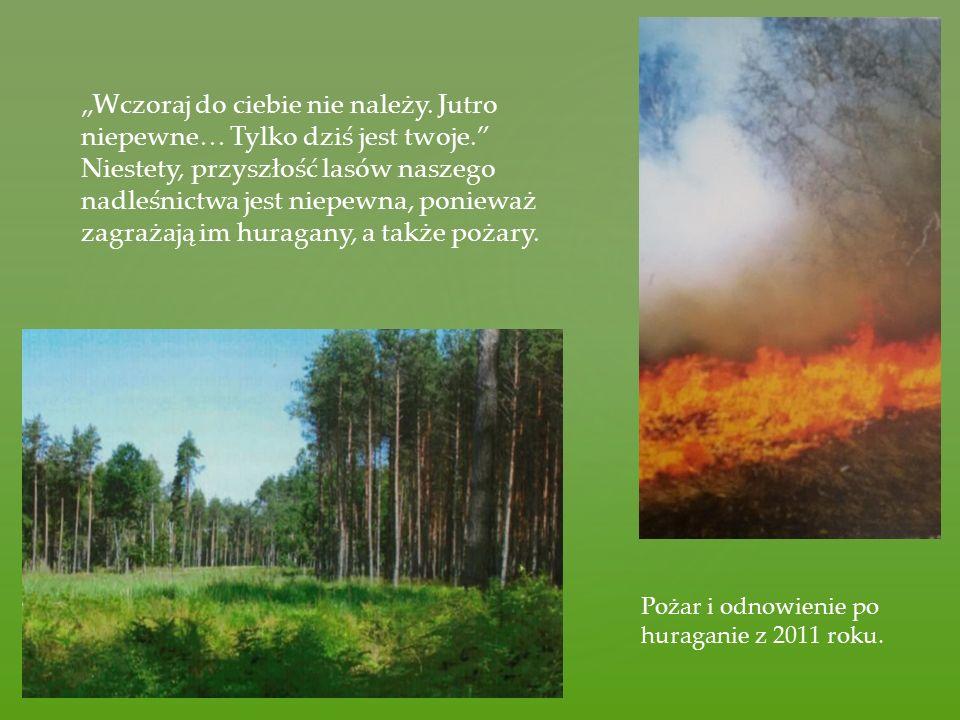 Nasi leśniczy nie tylko zajmują się ochroną i dbaniem o lasy, ale także aktywnie spędzają wolny czas.