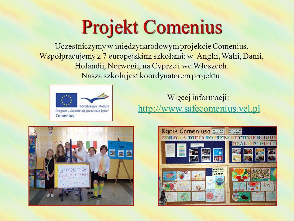 Projekt Comenius Uczestniczymy w międzynarodowym projekcie Comenius. Współpracujemy z 7 europejskimi szkołami: w Anglii, Walii, Danii, Holandii, Norwe