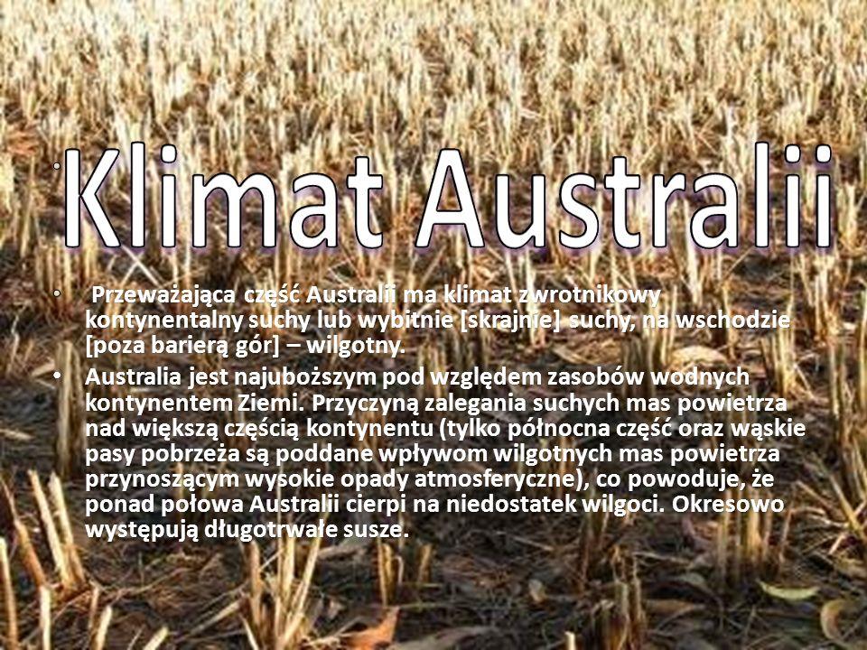 Australia stanowi osobne państwo roślinne, z dużą liczbą endemitów (np.