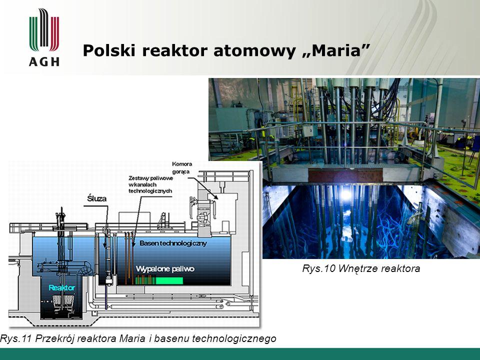 """Polski reaktor atomowy """"Maria Rys.11 Przekrój reaktora Maria i basenu technologicznego Rys.10 Wnętrze reaktora"""
