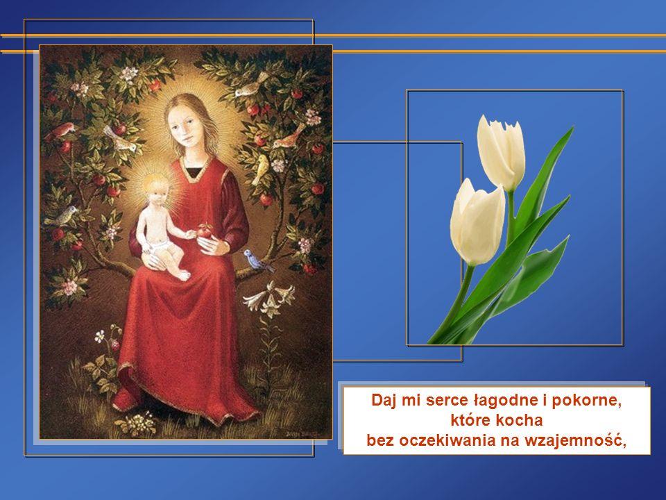 Serce wierne i otwarte, które nie zapomina żadnego dobra i nie chowa żadnej urazy.