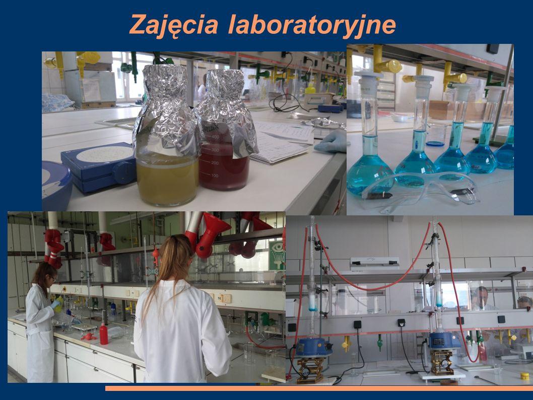 Zajęcia laboratoryjne