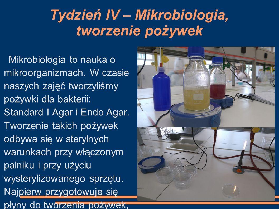 Tydzień IV – Mikrobiologia, tworzenie pożywek Mikrobiologia to nauka o mikroorganizmach. W czasie naszych zajęć tworzyliśmy pożywki dla bakterii: Stan