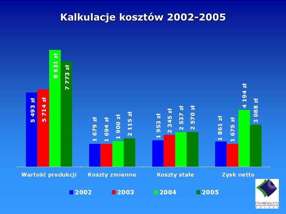 Kalkulacje kosztów 2002-2005
