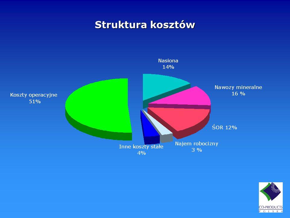 Struktura kosztów [Koszty operacyjne]
