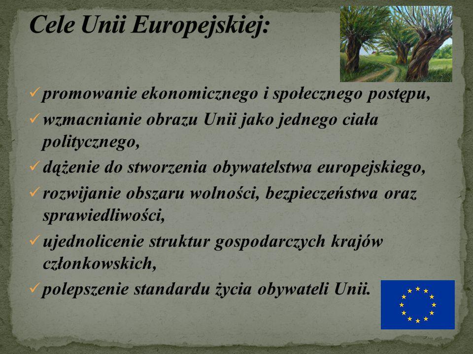 promowanie ekonomicznego i społecznego postępu, wzmacnianie obrazu Unii jako jednego ciała politycznego, dążenie do stworzenia obywatelstwa europejskiego, rozwijanie obszaru wolności, bezpieczeństwa oraz sprawiedliwości, ujednolicenie struktur gospodarczych krajów członkowskich, polepszenie standardu życia obywateli Unii.