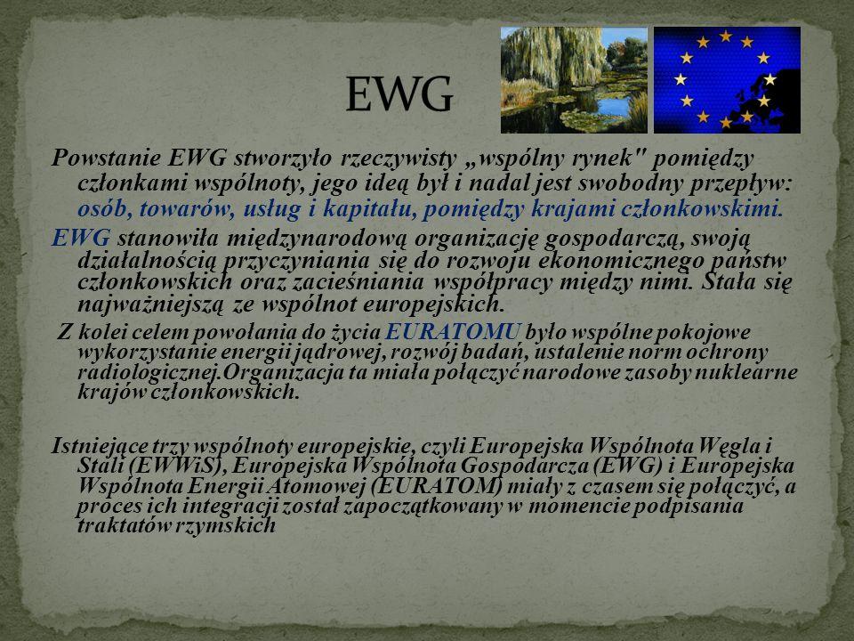 """Powstanie EWG stworzyło rzeczywisty """"wspólny rynek pomiędzy członkami wspólnoty, jego ideą był i nadal jest swobodny przepływ: osób, towarów, usług i kapitału, pomiędzy krajami członkowskimi."""