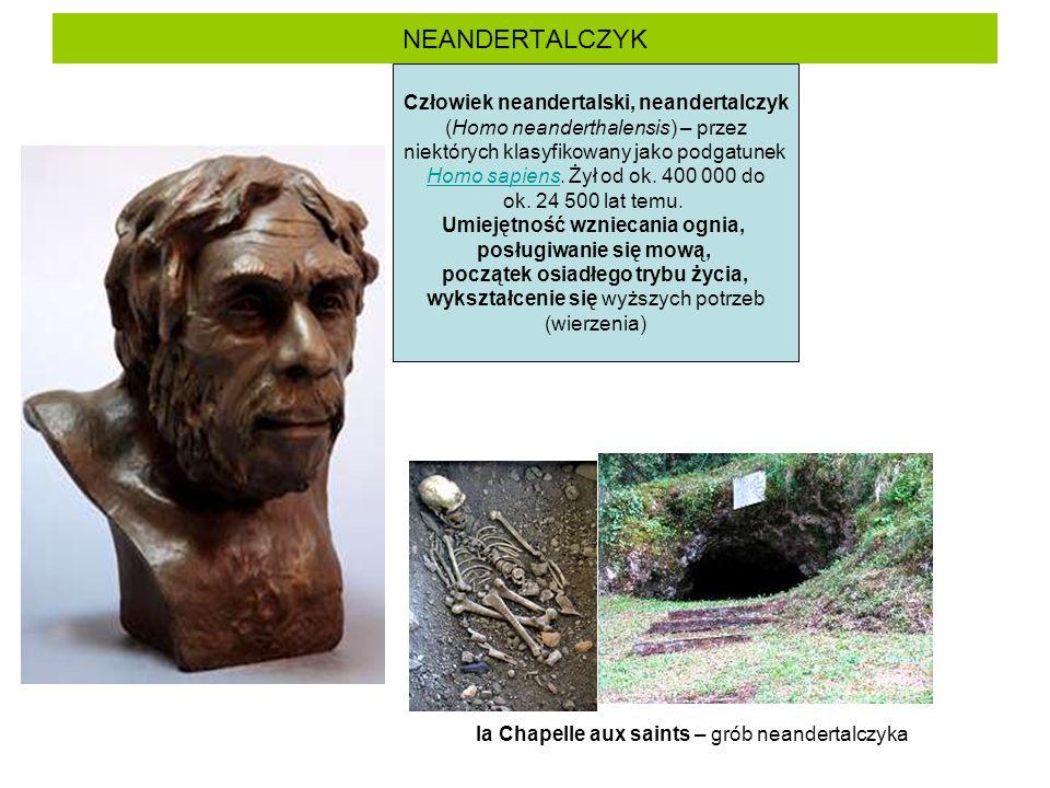 NEANDERTALCZYK Człowiek neandertalski, neandertalczyk (Homo neanderthalensis) – przez niektórych klasyfikowany jako podgatunek Homo sapiens.