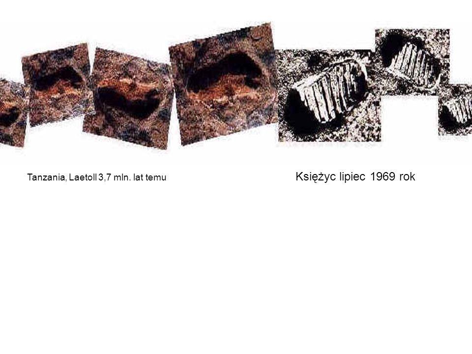 Tanzania, Laetoll 3,7 mln. lat temu Księżyc lipiec 1969 rok