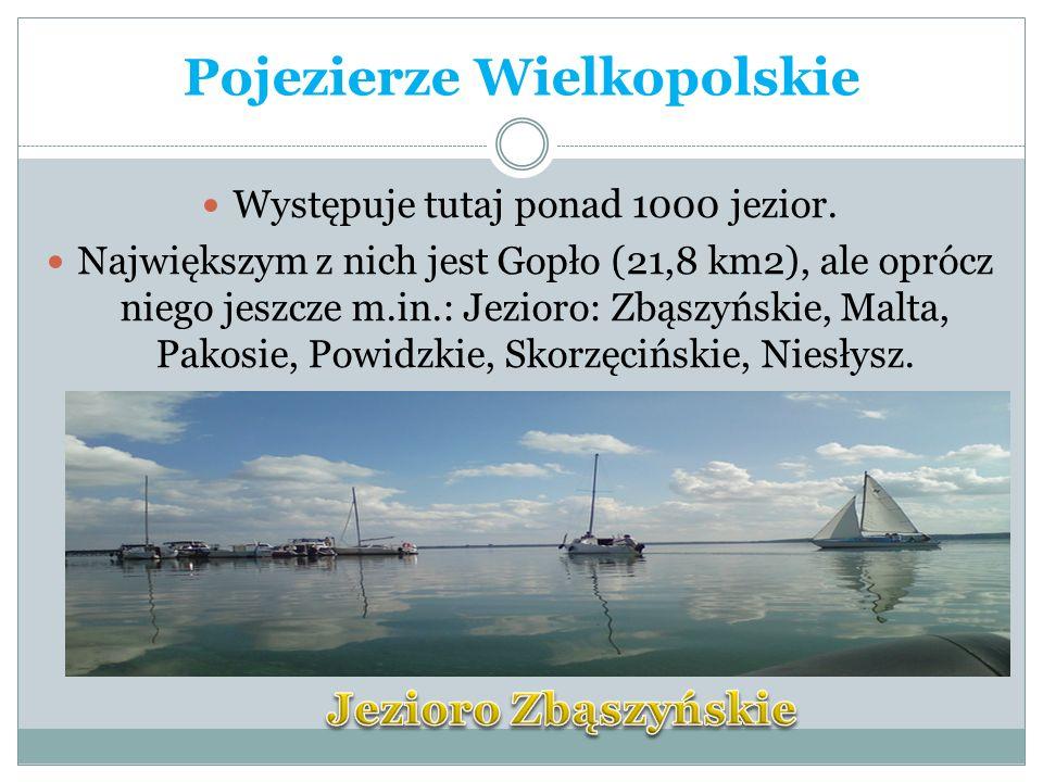Występuje tutaj ponad 1000 jezior. Największym z nich jest Gopło (21,8 km2), ale oprócz niego jeszcze m.in.: Jezioro: Zbąszyńskie, Malta, Pakosie, Pow