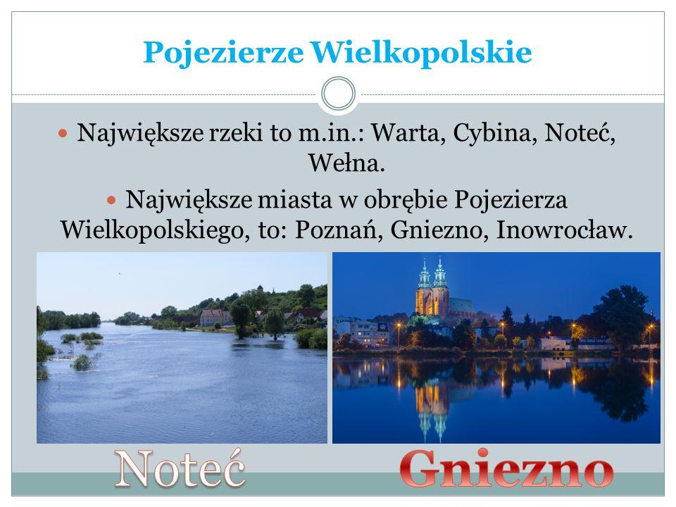 Pojezierze Wielkopolskie Największe rzeki to m.in.: Warta, Cybina, Noteć, Wełna. Największe miasta w obrębie Pojezierza Wielkopolskiego, to: Poznań, G