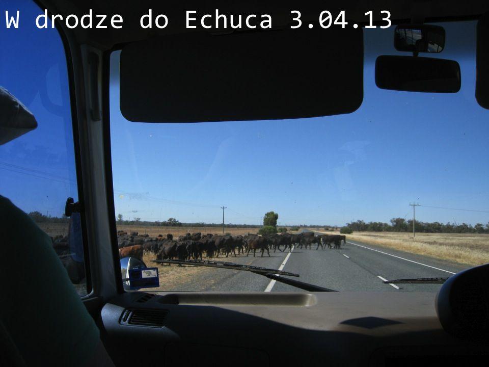 W drodze do Echuca 3.04.13