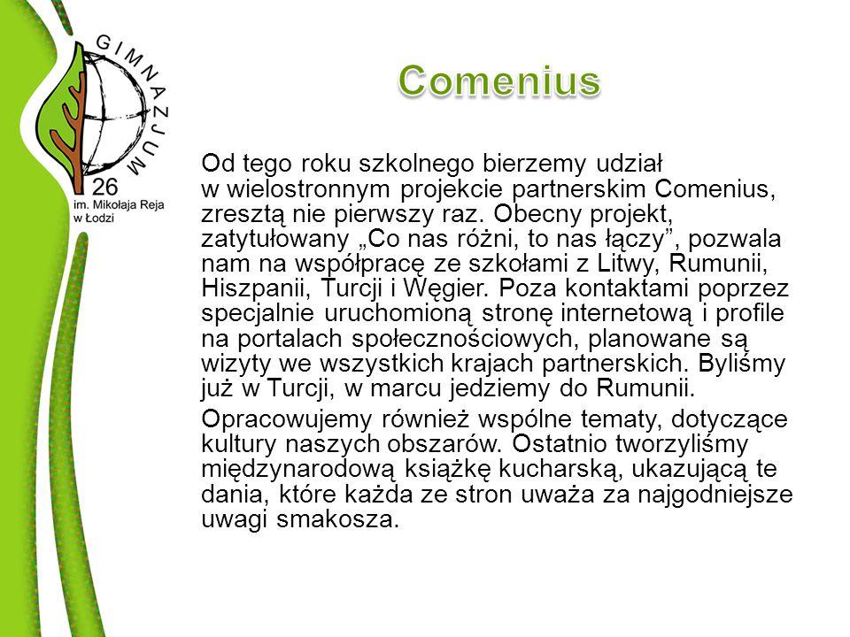 Od tego roku szkolnego bierzemy udział w wielostronnym projekcie partnerskim Comenius, zresztą nie pierwszy raz.