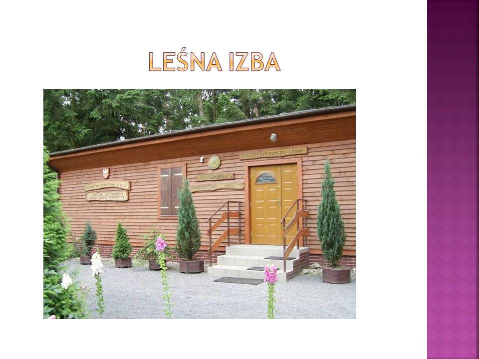  Leśna izba edukacyjna, wraz ze ścieżką przyrodniczo – leśną ''Leśny parów'', zostały utworzone na bazie szkółki leśnej Kiejsze'', istniejącej od 1979 roku.