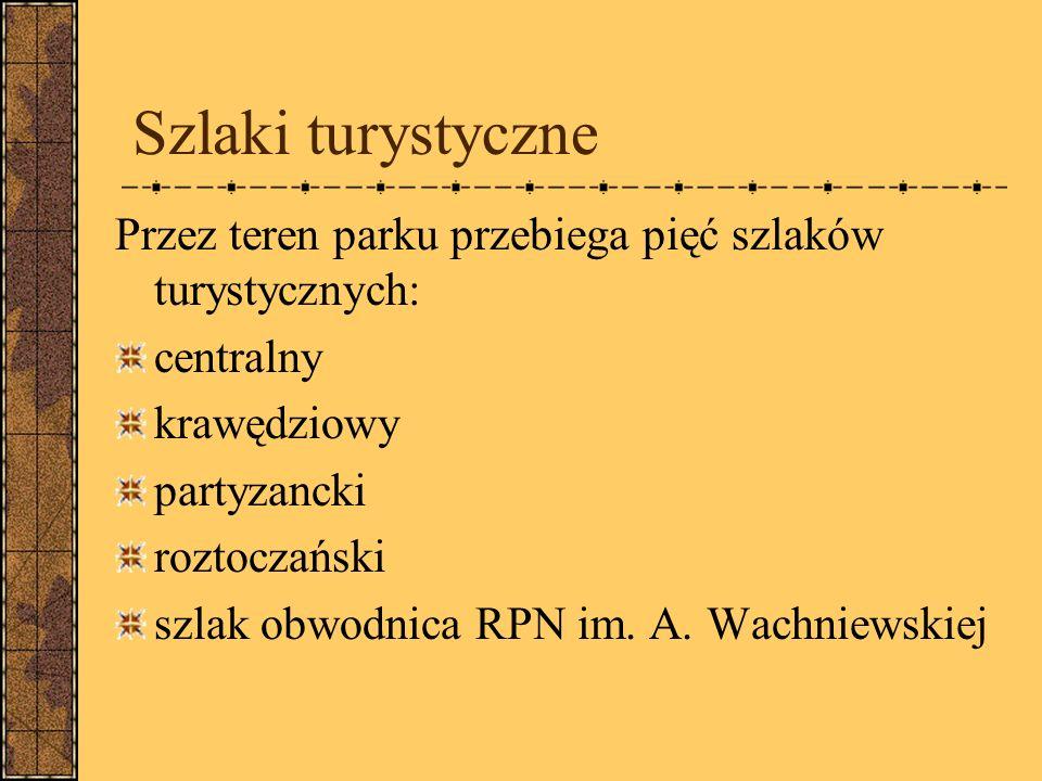 Szlaki turystyczne Przez teren parku przebiega pięć szlaków turystycznych: centralny krawędziowy partyzancki roztoczański szlak obwodnica RPN im.