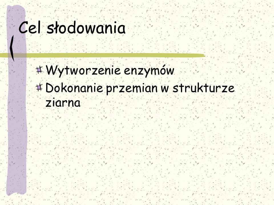 glukanazy endo-  -1,4-glukanaza obecna w surowym jęczmieniu endo-  -1,3-glukanaza powstaje przy słodowaniu solubilaza  -glukanu