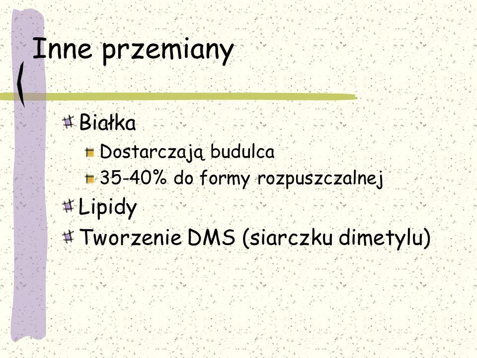 Inne przemiany Białka Dostarczają budulca 35-40% do formy rozpuszczalnej Lipidy Tworzenie DMS (siarczku dimetylu)