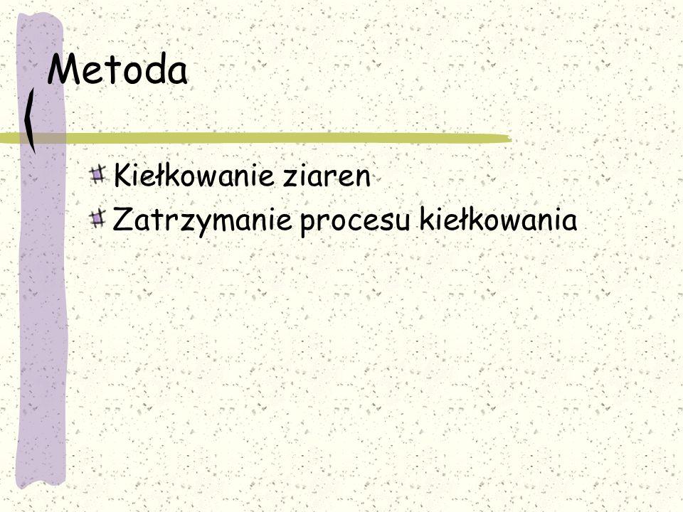 Suszenie i magazynowanie Szkodniki magazynowe Wołek zbożowy Gazowe środki owadobójcze (np.