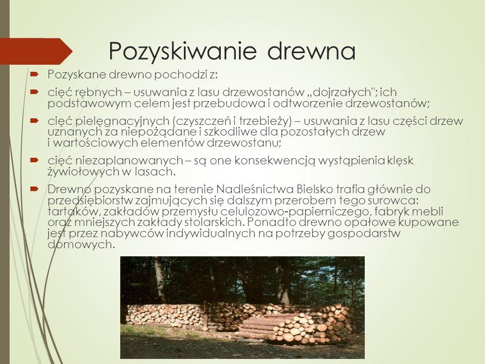 """Pozyskiwanie drewna  Pozyskane drewno pochodzi z:  cięć rębnych – usuwania z lasu drzewostanów """"dojrzałych ; ich podstawowym celem jest przebudowa i odtworzenie drzewostanów;  cięć pielęgnacyjnych (czyszczeń i trzebieży) – usuwania z lasu części drzew uznanych za niepożądane i szkodliwe dla pozostałych drzew i wartościowych elementów drzewostanu;  cięć niezaplanowanych – są one konsekwencją wystąpienia klęsk żywiołowych w lasach."""
