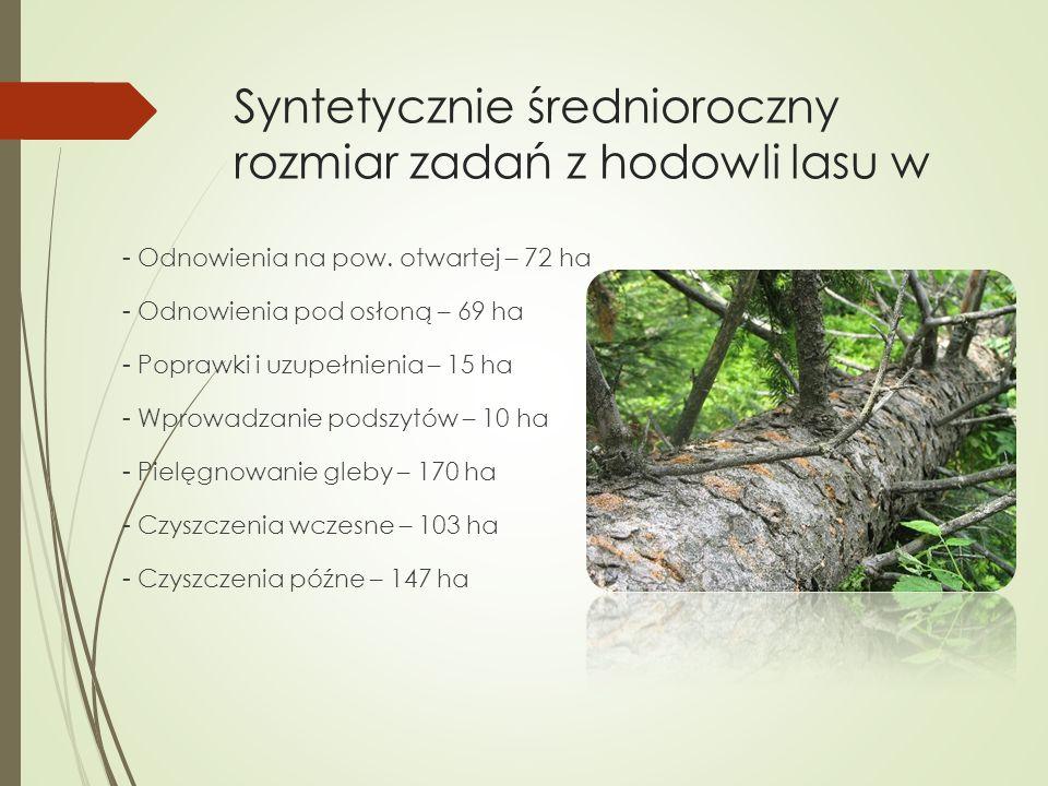 Syntetycznie średnioroczny rozmiar zadań z hodowli lasu w - Odnowienia na pow. otwartej – 72 ha - Odnowienia pod osłoną – 69 ha - Poprawki i uzupełnie