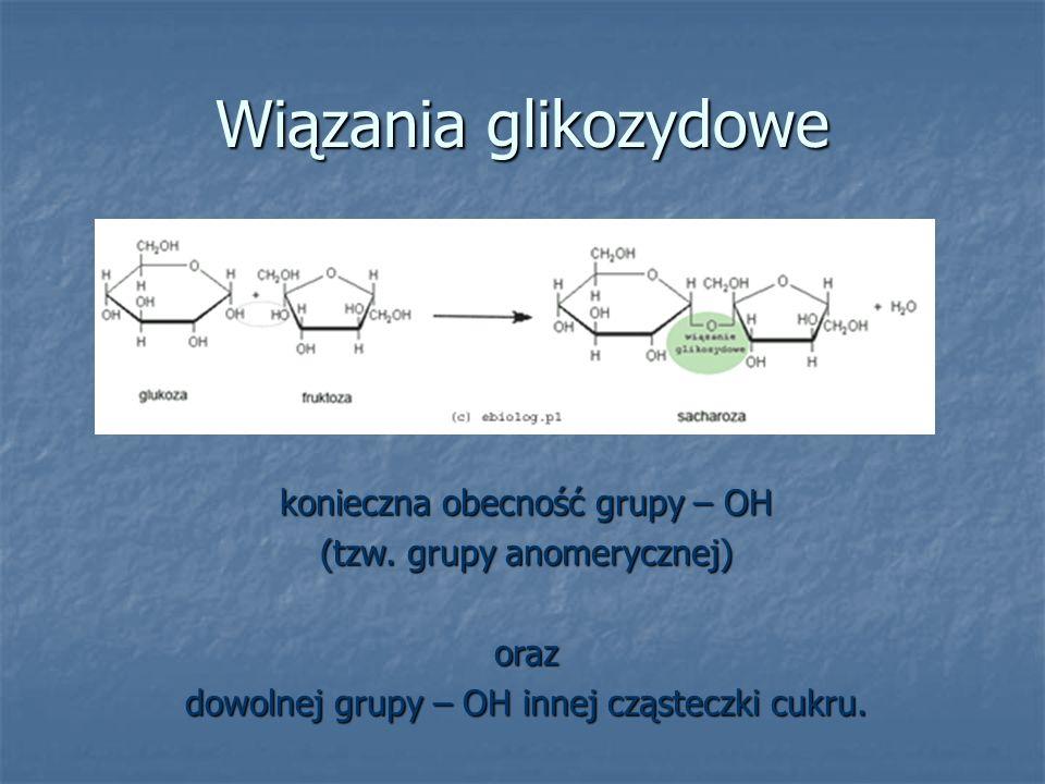 Wiązania glikozydowe konieczna obecność grupy – OH (tzw. grupy anomerycznej) oraz dowolnej grupy – OH innej cząsteczki cukru.