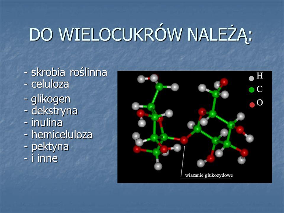 DO WIELOCUKRÓW NALEŻĄ: - skrobia roślinna - celuloza - skrobia roślinna - celuloza - glikogen - dekstryna - inulina - hemiceluloza - pektyna - i inne