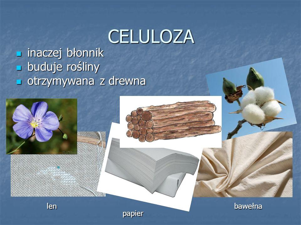 CELULOZA inaczej błonnik inaczej błonnik buduje rośliny buduje rośliny otrzymywana z drewna otrzymywana z drewna lenbawełna papier