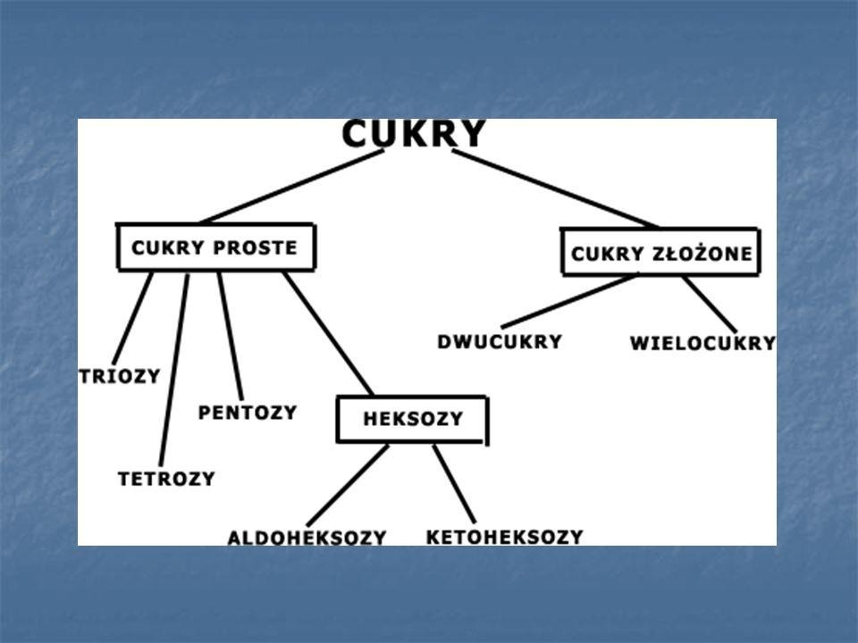 CUKRY PROSTE Zawierają dwie grupy funkcyjne: karbonylową (aldehydową lub ketonową) grupy hydroksylowe (zazwyczaj jest ich kilka) Wyróżniamy: Triozy Tetrozy Pentozy Heksozy