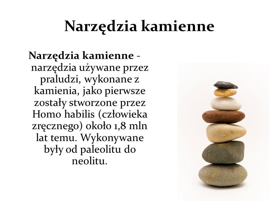Narzędzia kamienne Narzędzia kamienne - narzędzia używane przez praludzi, wykonane z kamienia, jako pierwsze zostały stworzone przez Homo habilis (czł