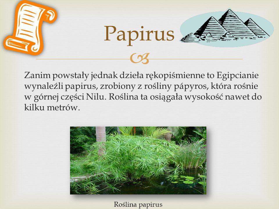  Zanim powstały jednak dzieła rękopiśmienne to Egipcianie wynaleźli papirus, zrobiony z rośliny pápyros, która rośnie w górnej części Nilu. Roślina t