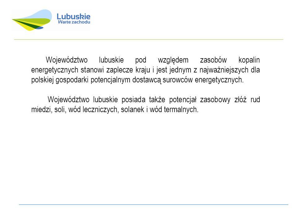 Województwo lubuskie pod względem zasobów kopalin energetycznych stanowi zaplecze kraju i jest jednym z najważniejszych dla polskiej gospodarki potenc