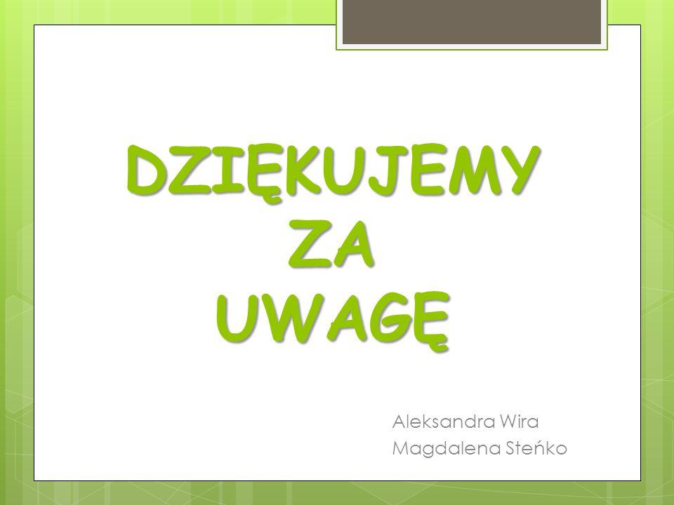 DZIĘKUJEMY ZA UWAGĘ Aleksandra Wira Magdalena Steńko