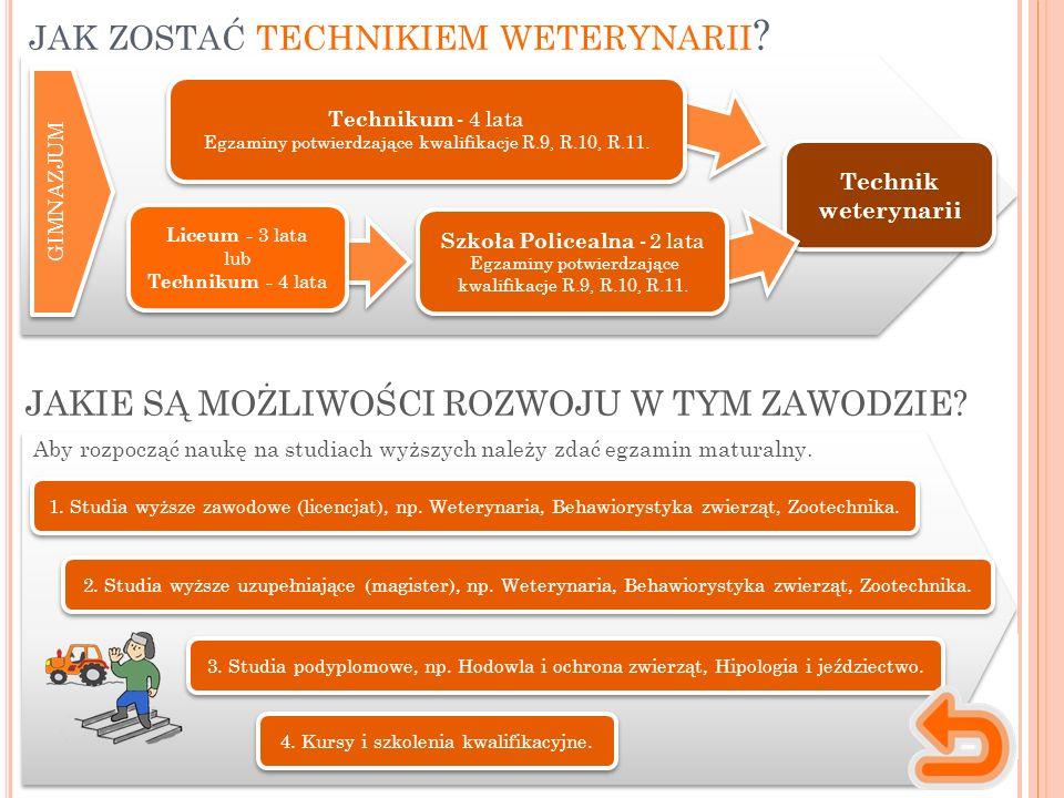 1. Studia wyższe zawodowe (licencjat), np. Weterynaria, Behawiorystyka zwierząt, Zootechnika. Aby rozpocząć naukę na studiach wyższych należy zdać egz