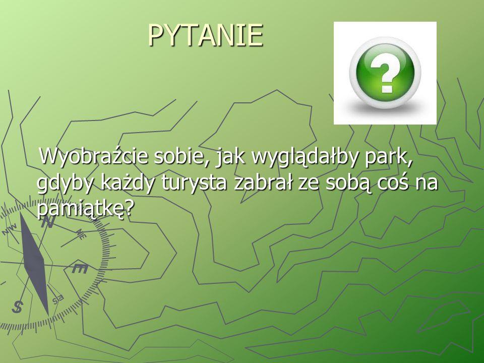 REGULAMIN ZACHOWANIA SIĘ W PARKU NARODOWYM 1) Nie zrywaj i nie niszcz roślin ani grzybów.