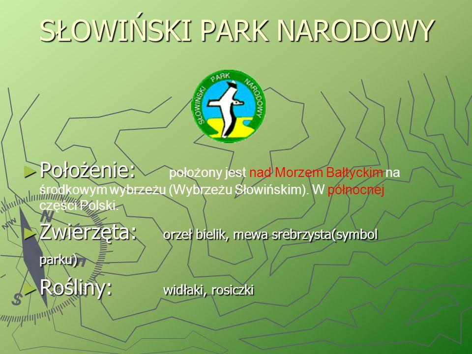 BIAŁOWIESKI PARK NARODOWY ► Położenie: leży we wschodniej części Polski.