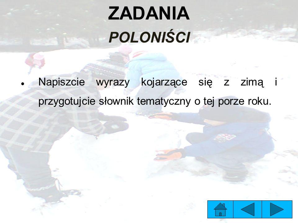 ZADANIA POLONIŚCI Napiszcie wyrazy kojarzące się z zimą i przygotujcie słownik tematyczny o tej porze roku.