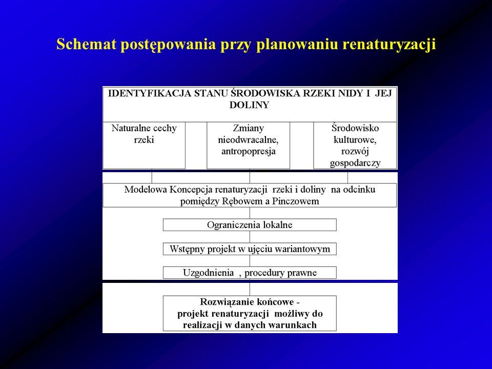 Schemat postępowania przy planowaniu renaturyzacji