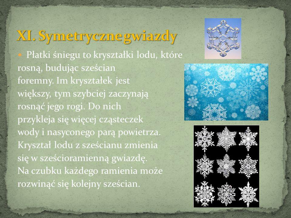 Płatki śniegu to kryształki lodu, które rosną, budując sześcian foremny. Im kryształek jest większy, tym szybciej zaczynają rosnąć jego rogi. Do nich