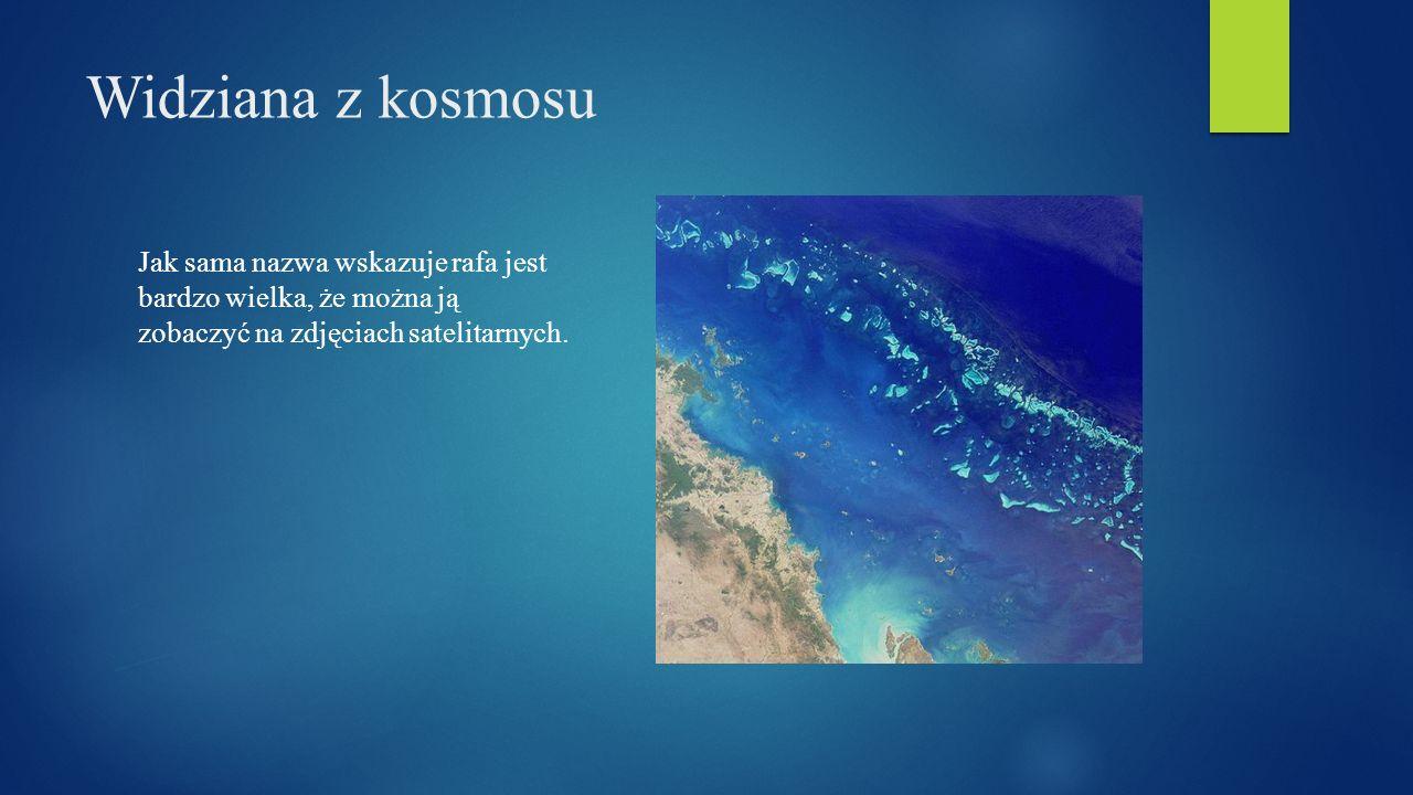Zagrożenia Wielkiej Rafy Koralowej Wielka Rafa Koralowa jest jedną największych atrakcji turystycznych w Australii.