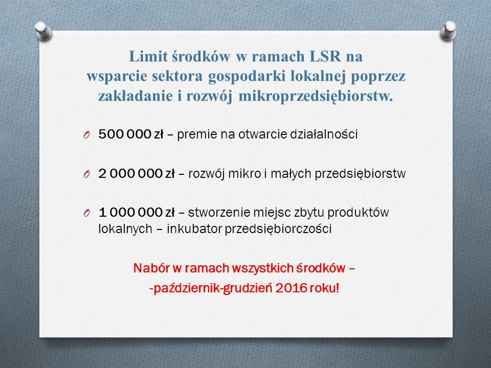 Limit środków w ramach LSR na wsparcie sektora gospodarki lokalnej poprzez zakładanie i rozwój mikroprzedsiębiorstw.