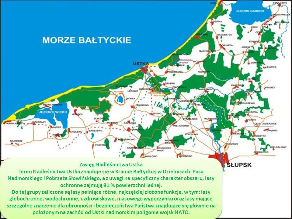 Zasięg Nadleśnictwa Ustka Teren Nadleśnictwa Ustka znajduje się w Krainie Bałtyckiej w Dzielnicach: Pasa Nadmorskiego i Pobrzeża Słowińskiego, a z uwagi na specyficzny charakter obszaru, lasy ochronne zajmują 81 % powierzchni leśnej.
