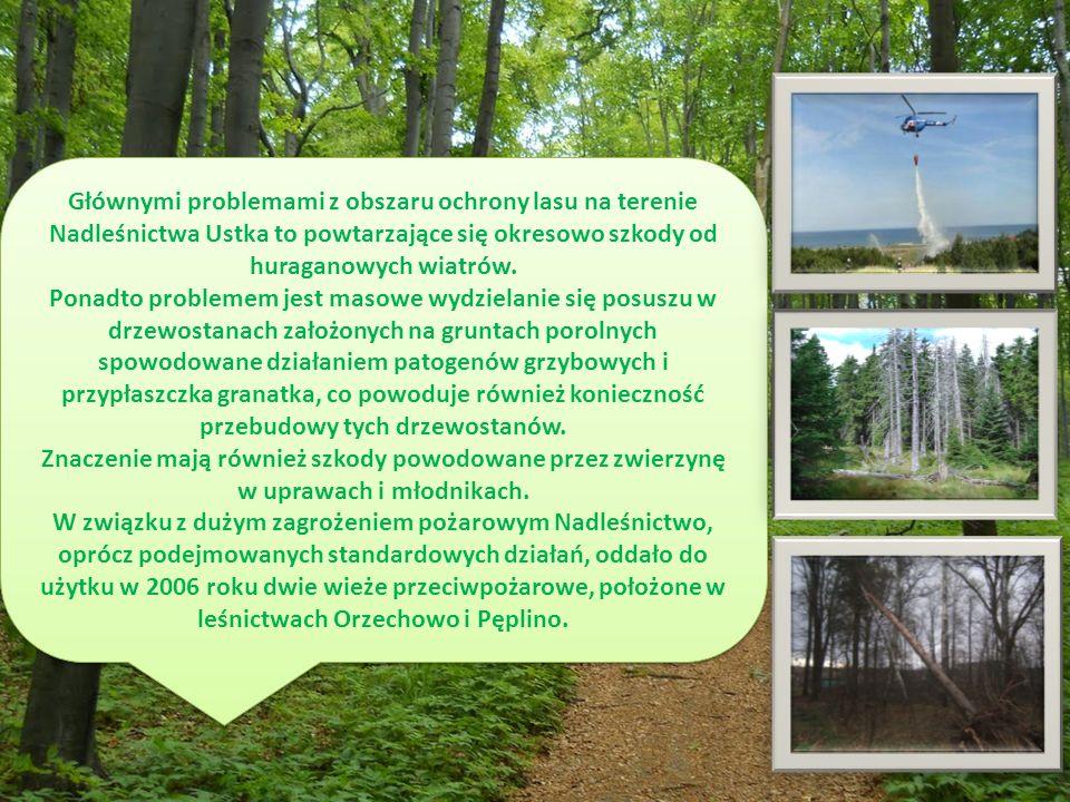 Głównymi problemami z obszaru ochrony lasu na terenie Nadleśnictwa Ustka to powtarzające się okresowo szkody od huraganowych wiatrów.