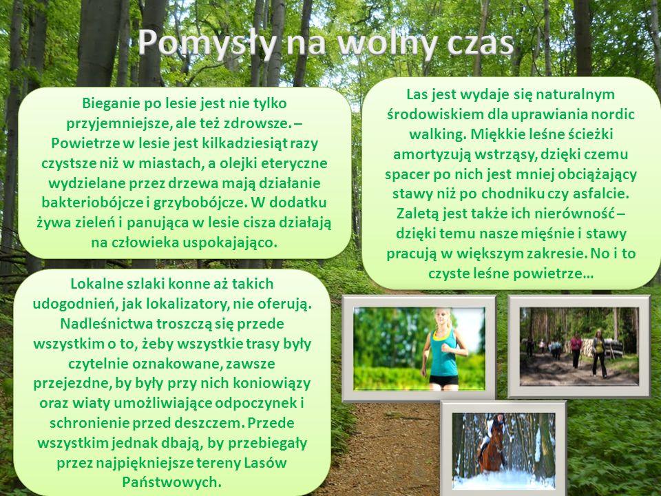 Bieganie po lesie jest nie tylko przyjemniejsze, ale też zdrowsze.