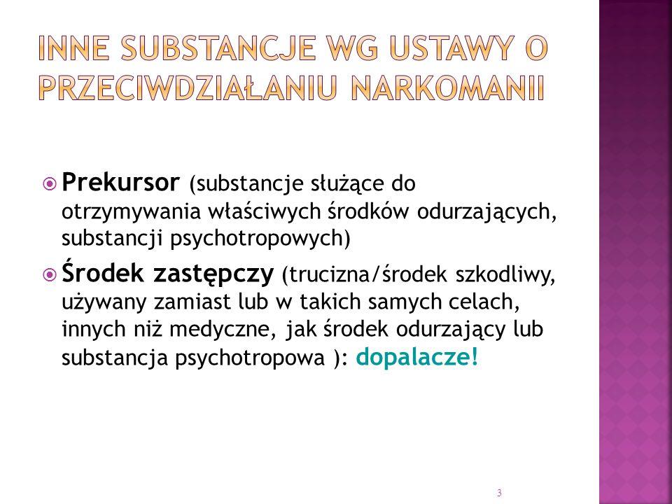  Prekursor (substancje służące do otrzymywania właściwych środków odurzających, substancji psychotropowych)  Środek zastępczy (trucizna/środek szkod