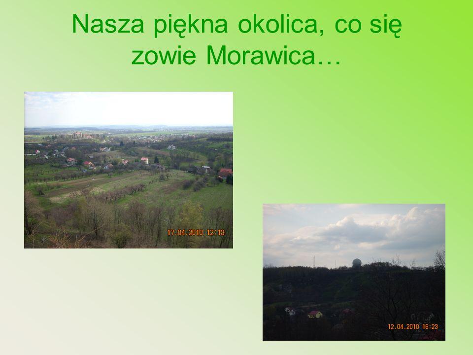 Nasza piękna okolica, co się zowie Morawica…