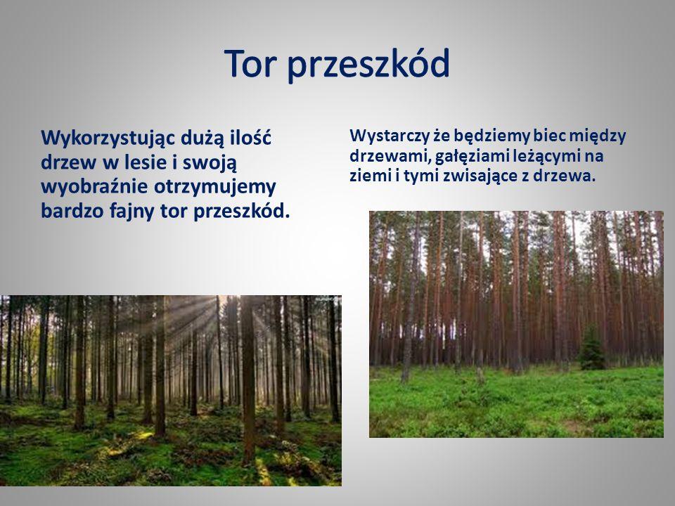 Wykorzystując dużą ilość drzew w lesie i swoją wyobraźnie otrzymujemy bardzo fajny tor przeszkód.