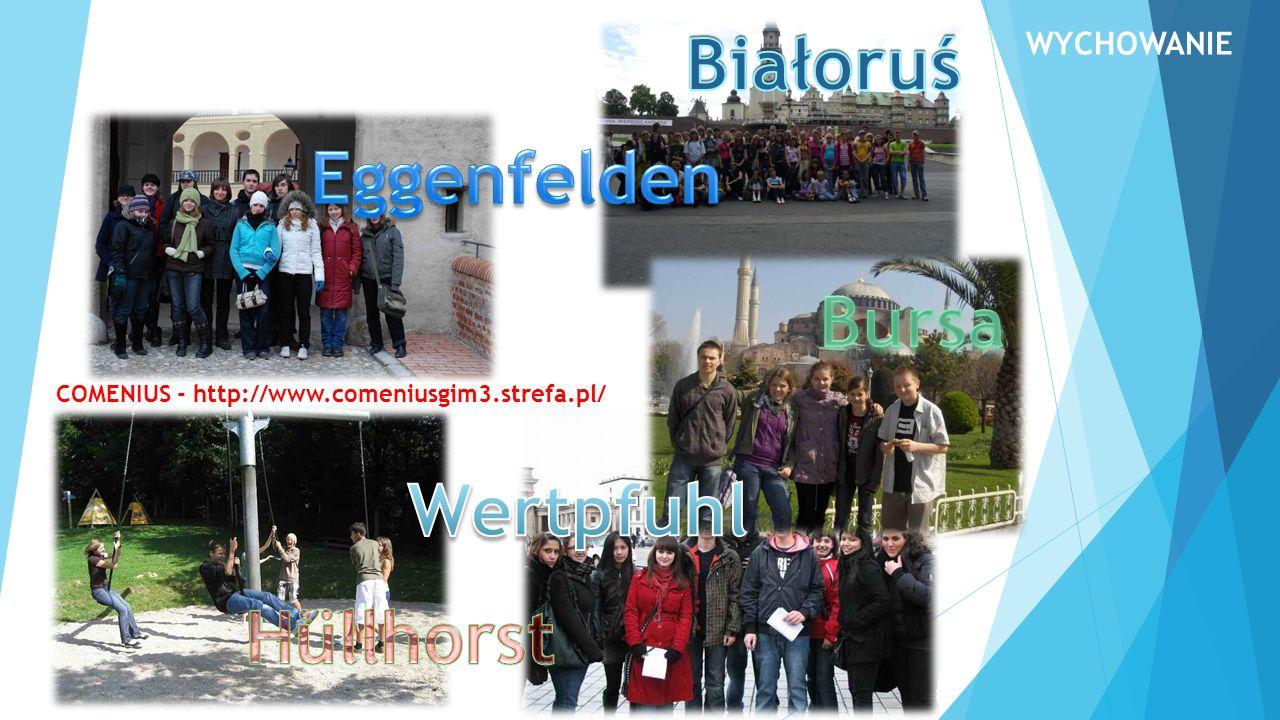 COMENIUS - http://www.comeniusgim3.strefa.pl/